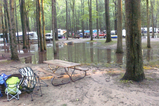 "This was the ""back yard"" of our campsite during that last camping trip...yikes!"